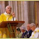 5, Homélie du Père Jacques Billout lors de la messe d'au revoir à la cathédrale, dimanche 31 août 2014,  DSC_0496