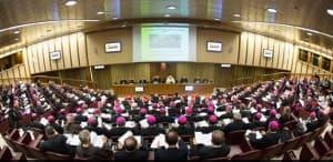 Synode 2014 - l'assemblée