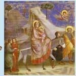 Bulletin 1170 de la paroisse Sainte Famille, du dimanche 15 septembre 2019