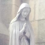 Chez nous, découvrir Marie