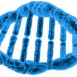 Les états généraux de la bioéthique